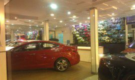 Korean Motorcar Showroom, Iran